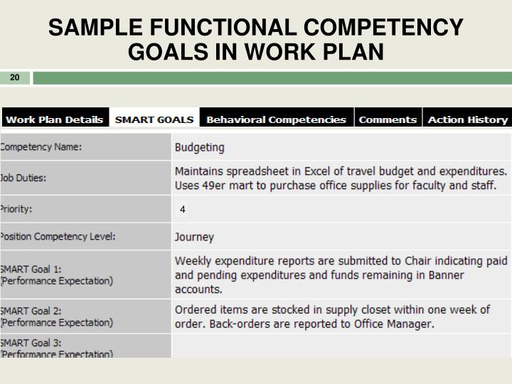 SAMPLE FUNCTIONAL COMPETENCY GOALS IN WORK PLAN