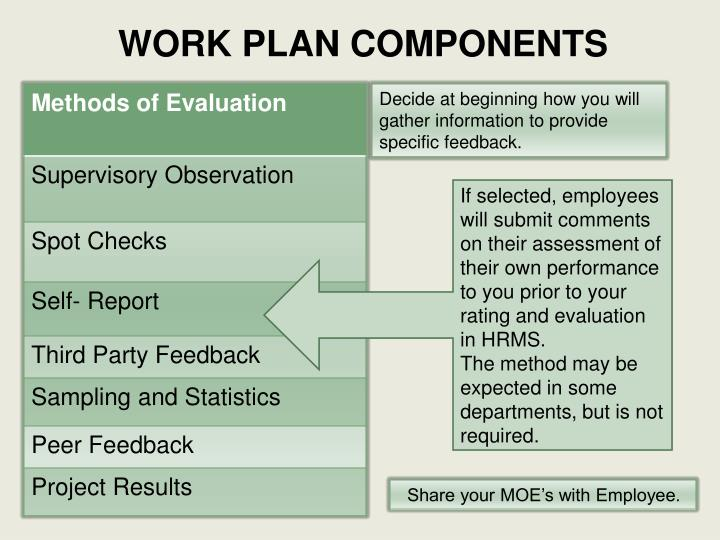 WORK PLAN COMPONENTS