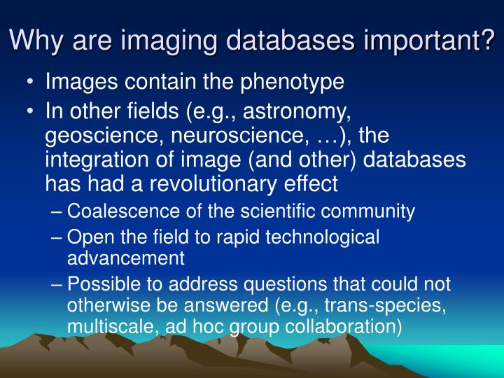 Why are imaging databases important?