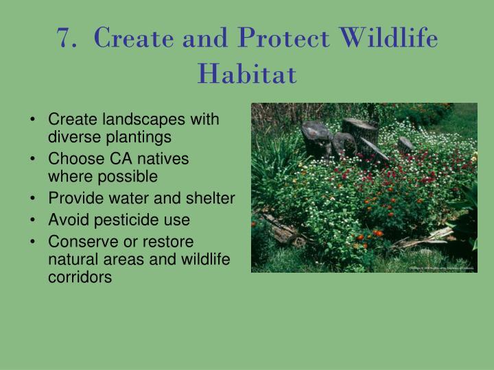 7.  Create and Protect Wildlife Habitat