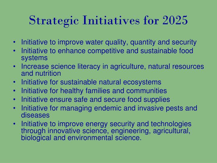 Strategic Initiatives for 2025