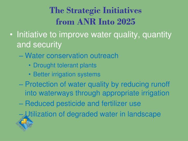 The Strategic Initiatives