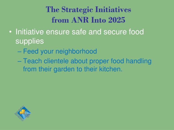The Strategic Initiatives