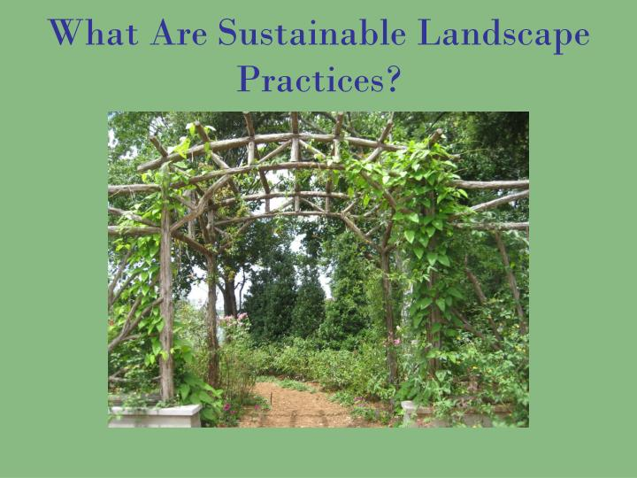What Are Sustainable Landscape Practices?