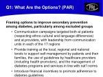 q1 what are the options par