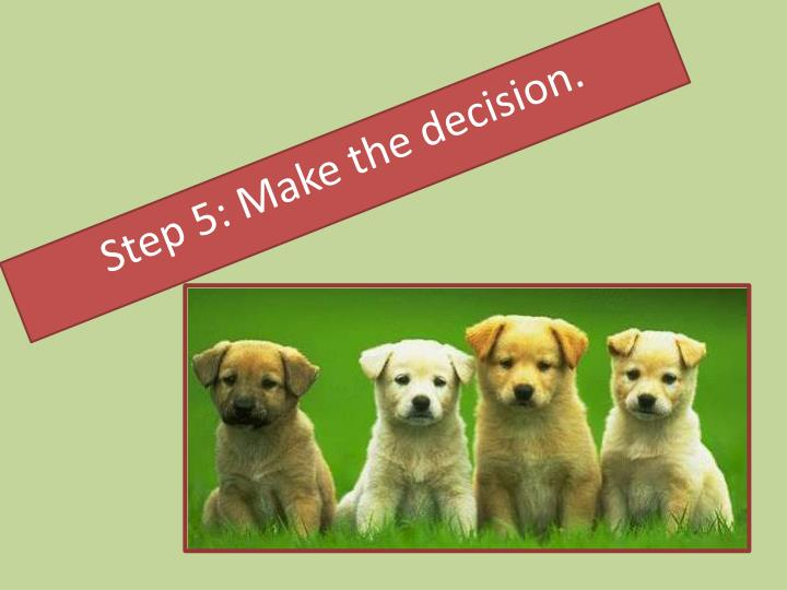 Step 5: Make the decision.