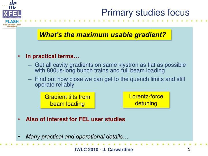 Primary studies focus