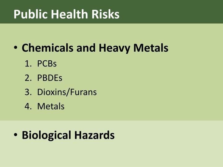 Public Health Risks