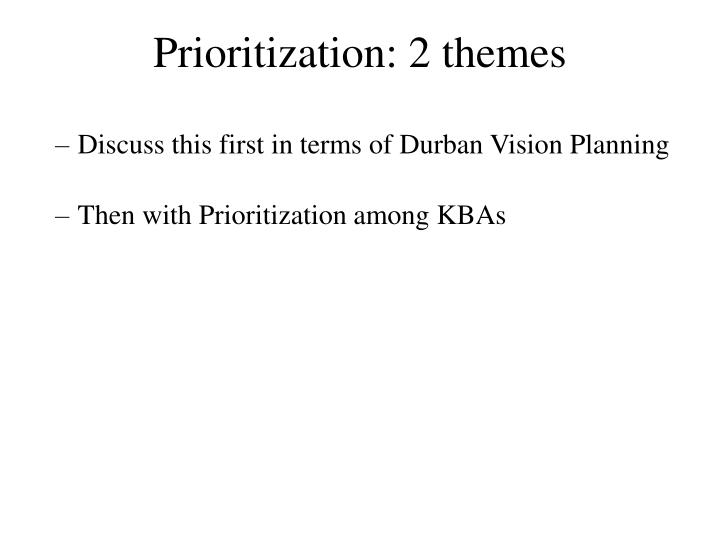 Prioritization: 2 themes