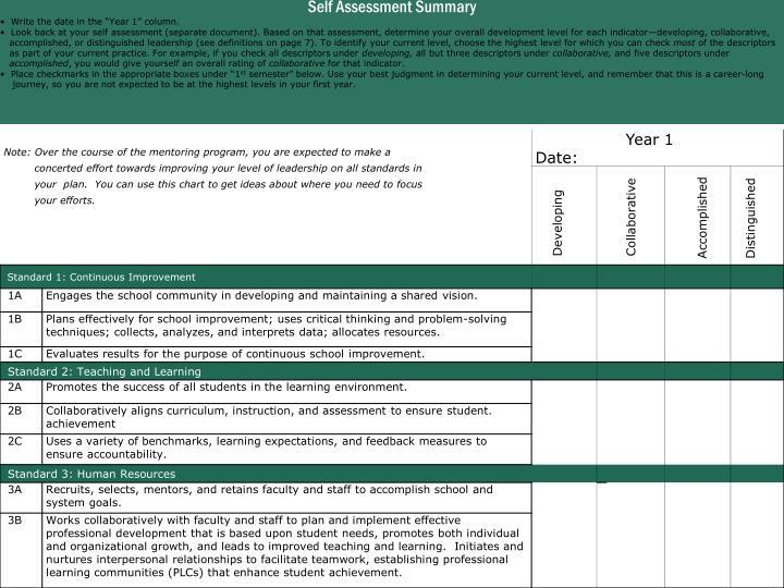Self Assessment Summary