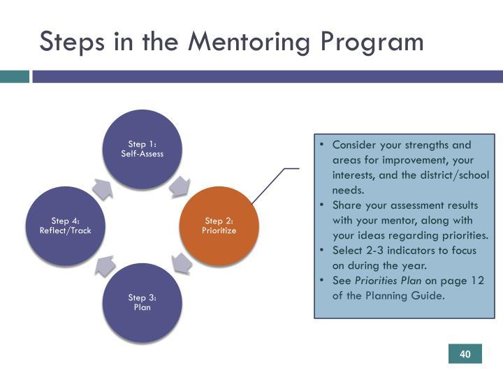 Steps in the Mentoring Program