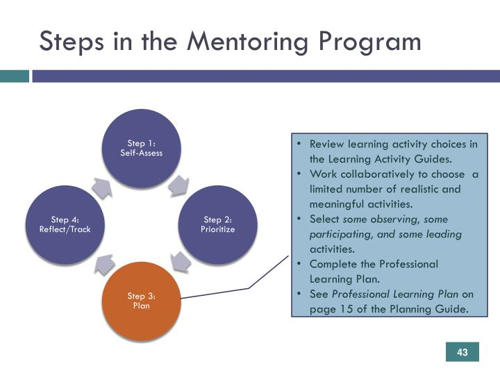 Steps in the Mentoring Program