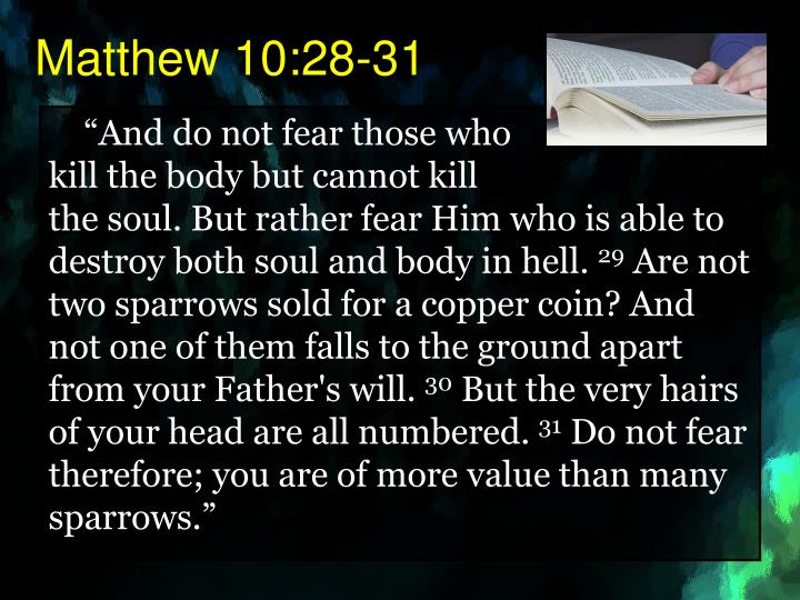 Matthew 10:28-31