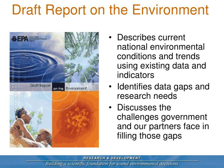 Draft Report on the Environment