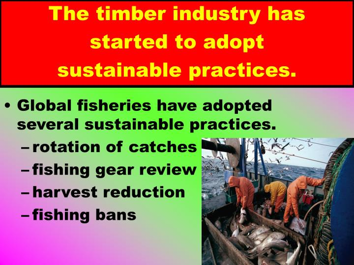 The timber industry has