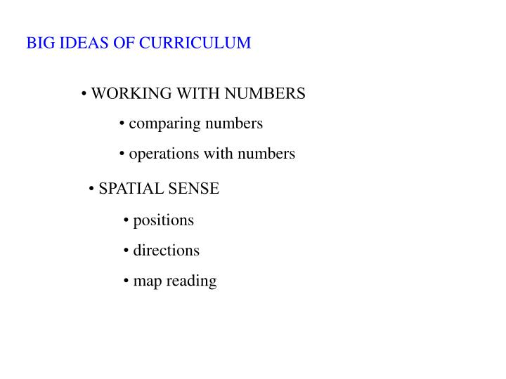 BIG IDEAS OF CURRICULUM