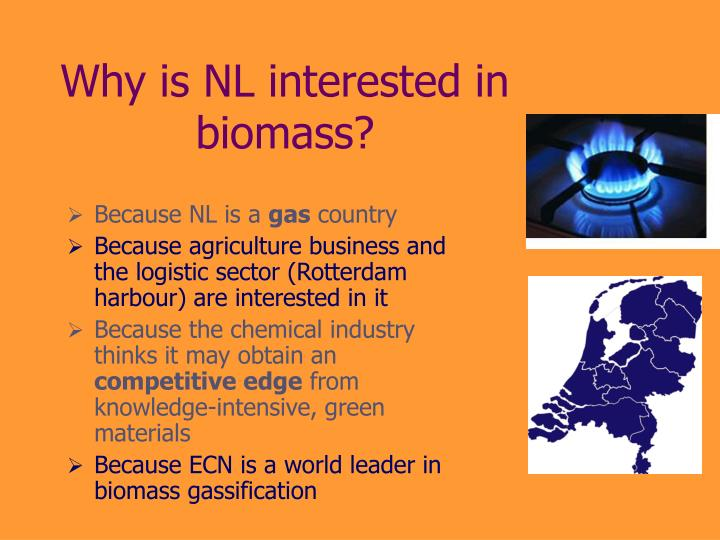 Why is NL interested in biomass?
