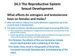 34 3 the reproductive system sexual development