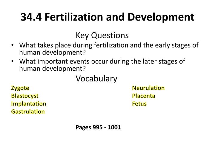 34.4 Fertilization and Development