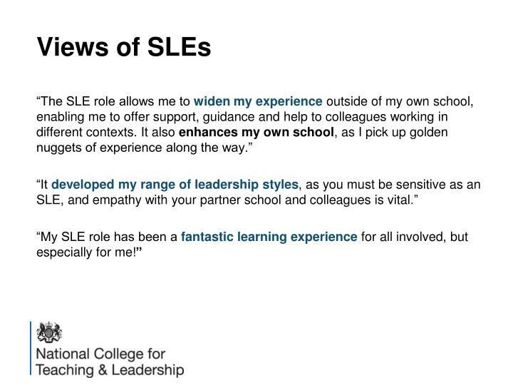 Views of SLEs