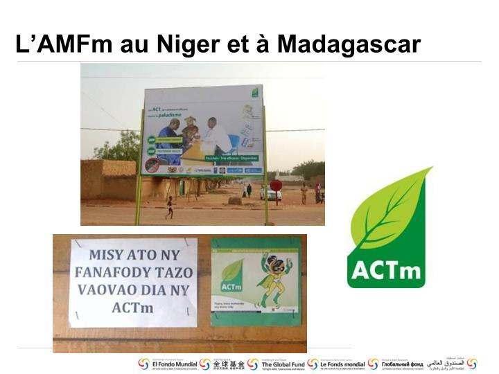 L'AMFm au Niger et à Madagascar