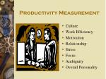productivity measurement