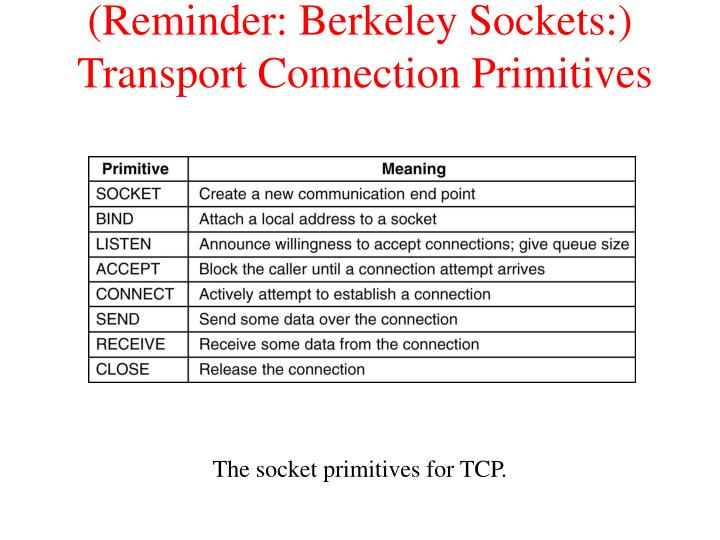 (Reminder: Berkeley Sockets:)