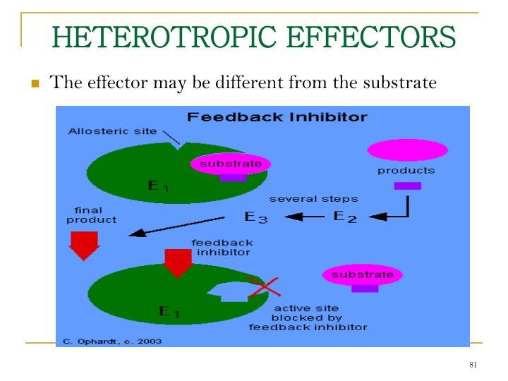 HETEROTROPIC EFFECTORS