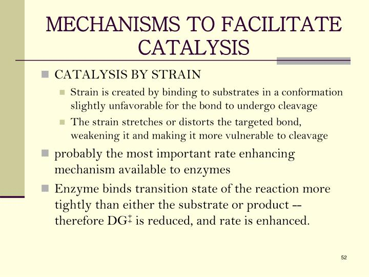 MECHANISMS TO FACILITATE CATALYSIS