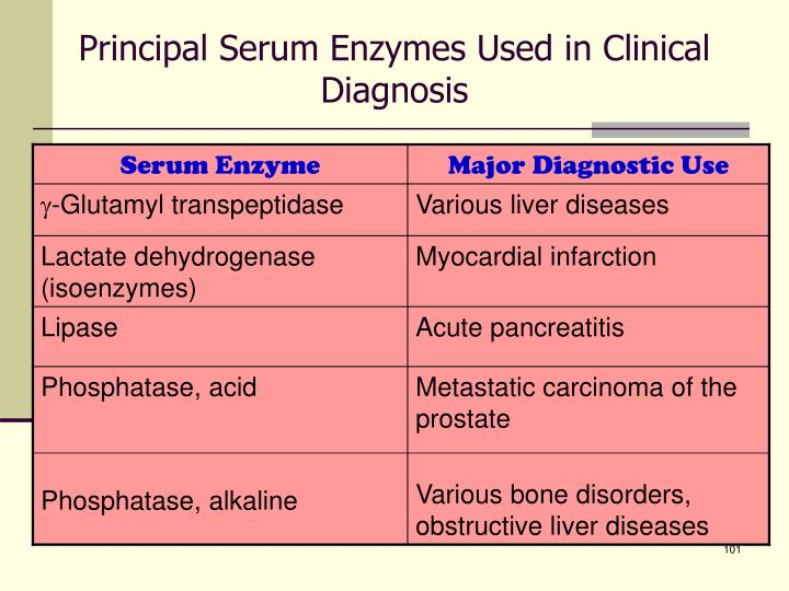 Principal Serum Enzymes Used in Clinical Diagnosis