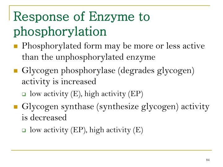 Response of Enzyme to phosphorylation