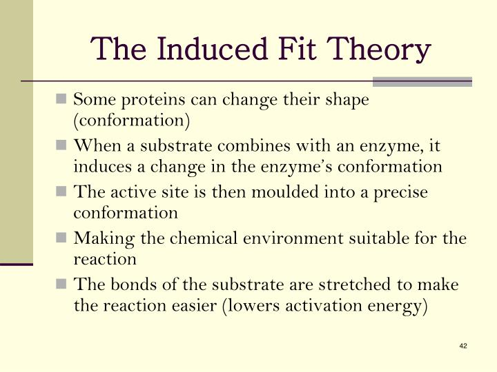 The Induced Fit Theory