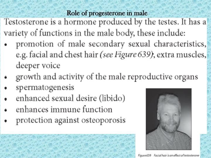 Role of progesterone in male