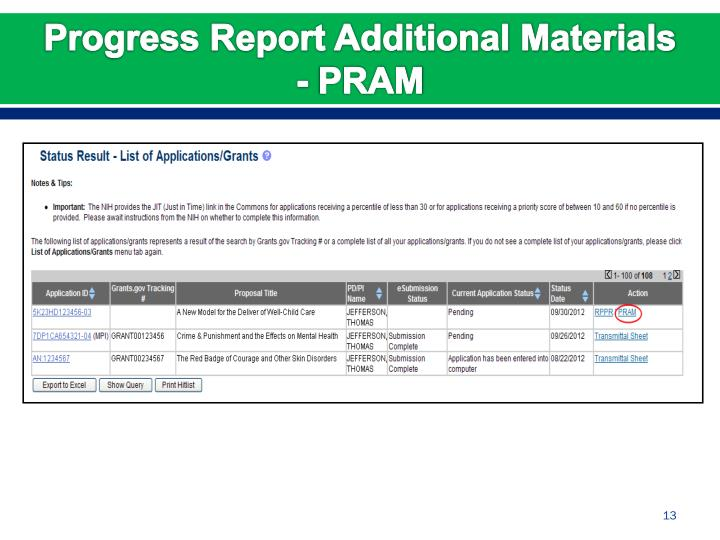 Progress Report Additional Materials - PRAM
