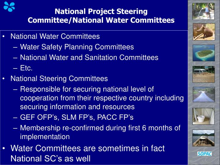 National Project Steering Committee/National Water Committees