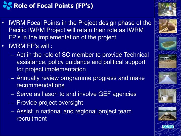 Role of Focal Points (FP's)