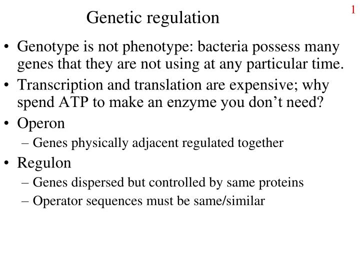 Genetic regulation