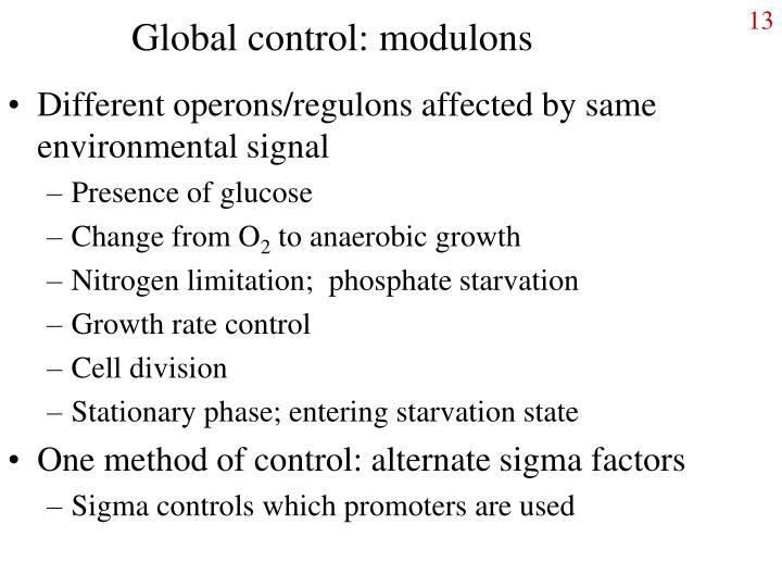 Global control: modulons