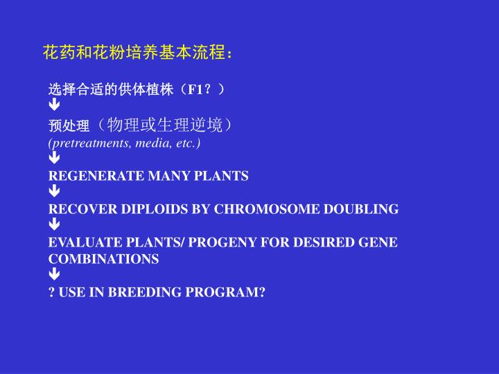 花药和花粉培养基本流程: