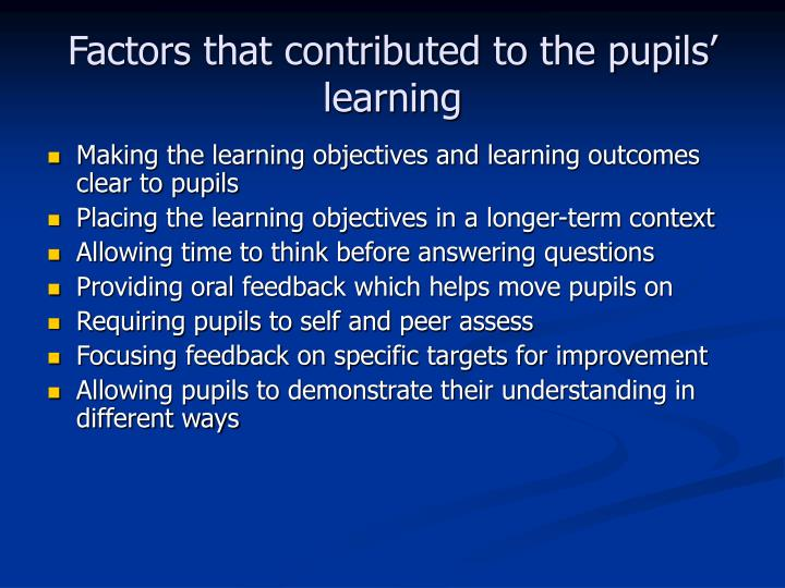 Factors that contributed to the pupils' learning