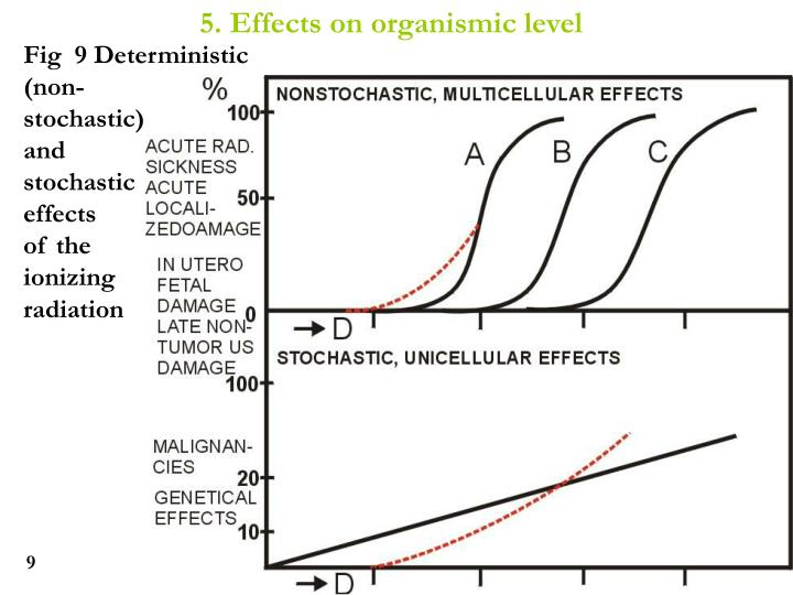 5. Effects on organismic level