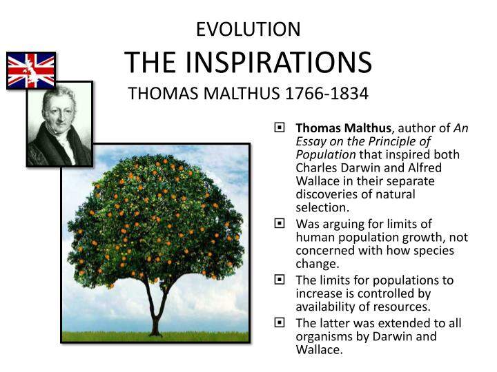 """thomas malthus essay on human population The most well-known theory of population is the malthusian theory thomas robert malthus wrote his essay on """"principle of population"""" in 1798 and modified some of."""