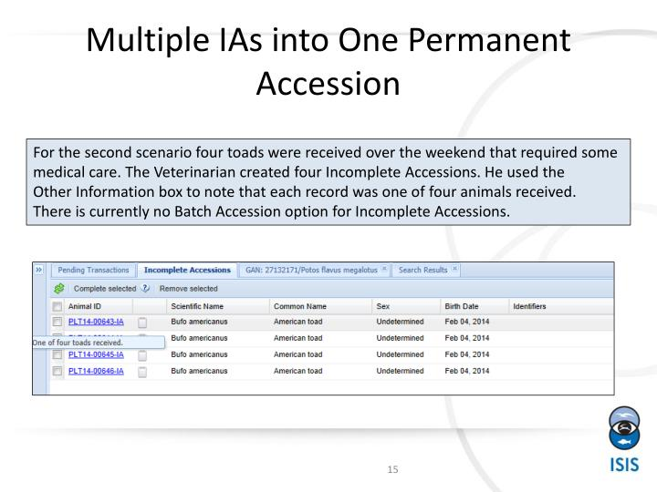 Multiple IAs into One Permanent Accession