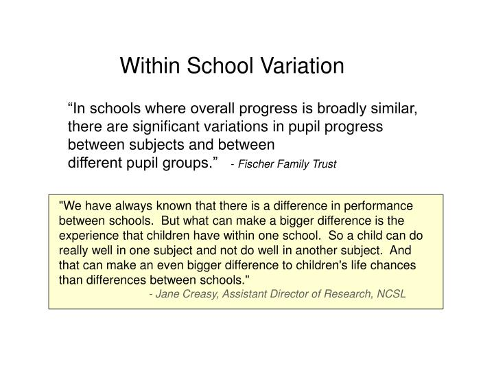 Within School Variation