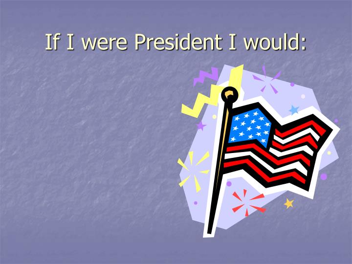 If I were President I would: