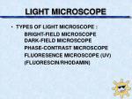 light microscope1