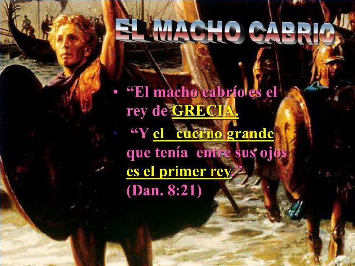 EL MACHO CABRIO