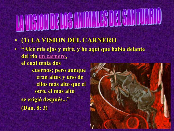 LA VISION DE LOS ANIMALES DEL SANTUARIO