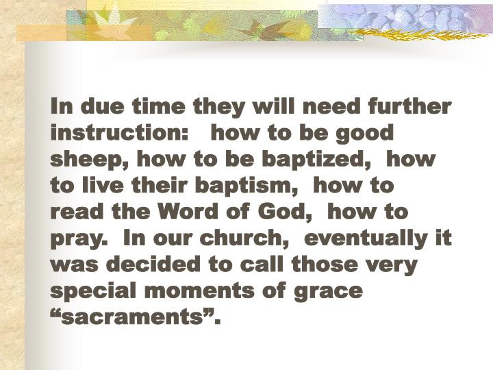 "In due time they will need further instruction:   how to be good sheep, how to be baptized,  how to live their baptism,  how to read the Word of God,  how to pray.  In our church,  eventually it was decided to call those very special moments of grace ""sacraments""."