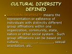 cultural diversity defined